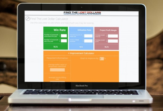 Screen Shot Find the Lost Dollars Online Learning Platform Training for Business Managers and Project Managers